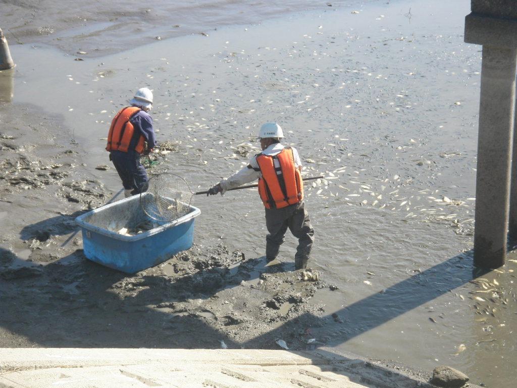 令和2年度筑後川下流右岸農地防災事業 徳富線(黒井その2工区)工事